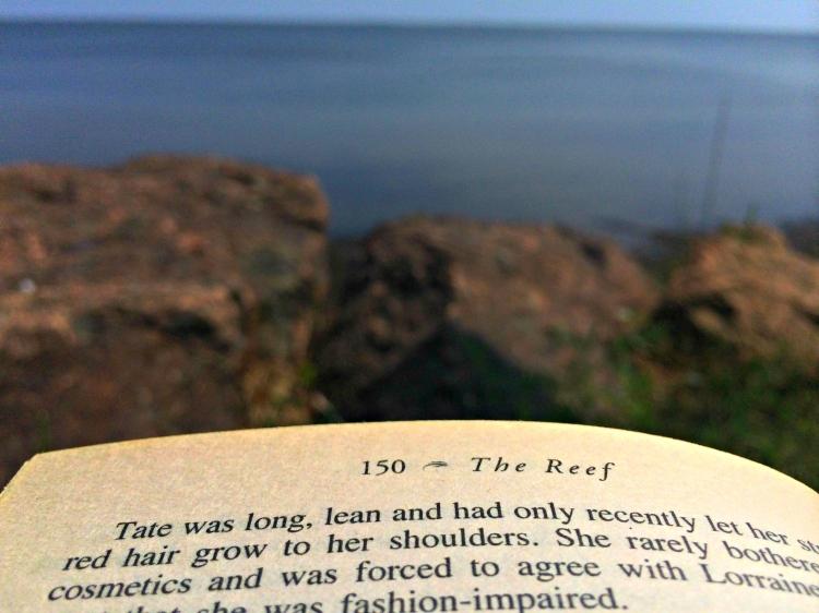 thereef_booksinmybeachbag