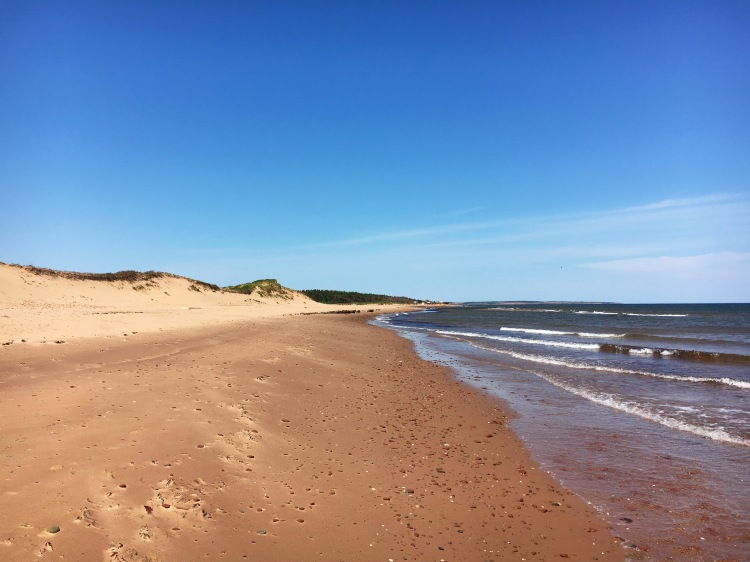 Cavendish Beach Length